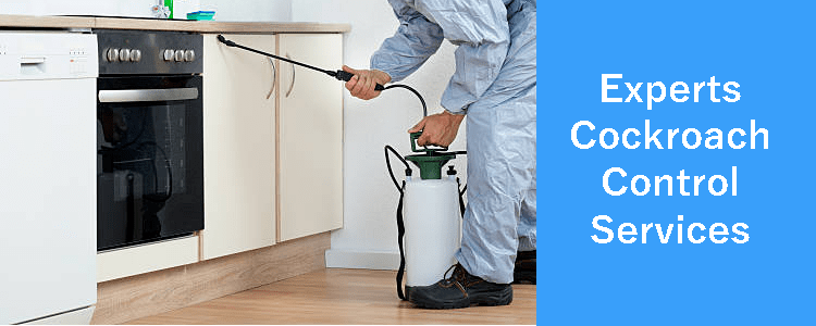 Experts Cockroach Control Services